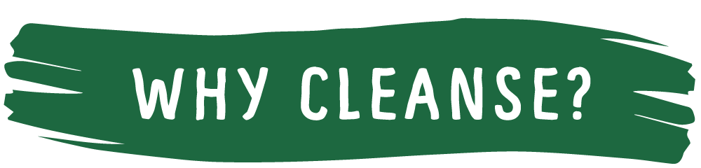 whycleanse1